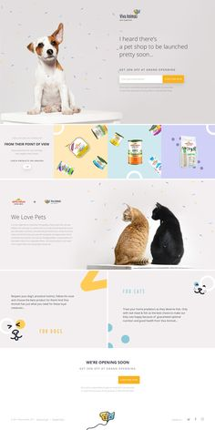 Viva Animali landing page design inspiration - Lapa Ninja Ecommerce Web Design, Wordpress Theme Design, Pet Websites, Pet Branding, Landing Page Design, Website Design Inspiration, Web Layout, Interactive Design, Pet Shop