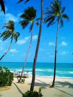 Chaweng Noi Beach Koh Samui #Thailand best #beaches #islands Koh Samui has cheap inexpensive accommodation , a cheap way to travel to Koh Samui is by train and ferry or using budget airline and ferry combined fares - HONEYMOON PLEASE! @rafa1112
