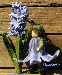 hyacintje