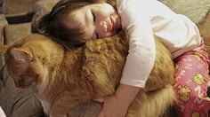 This snuggle kitty. | 31 Times Cats Were Good People