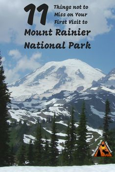 Planning your first visit to Mount Rainier? Here are 11 things not to miss on your first visit to Mount Rainier National Park. Includes waterfalls wildflowers hiking and glaciers. Usa Travel Guide, Travel Usa, Mt Rainier National Park, Us National Parks, Travel Activities, Vacation Spots, Seattle Vacation, Seattle Travel, United States Travel