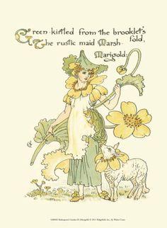Shakespeare's Garden IX (Marigold) Illustration by Walter Crane