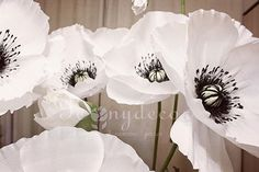Скоро будут готовы алые маки #peonydecor #пиондекор #цветы #вороне #vrn #маки #свадьбаворонеж #оформлениесвадьбы #свадебныйдекор #бумажныецветы #paper #paperflowers #фотографворонеж #белыемаки #ростовыецветы