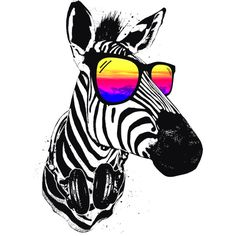 Cool Zebra is a T Shirt designed by clingcling to illustrate your life and is available at Design By Humans