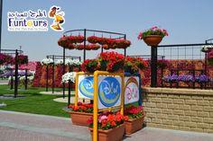Miracle Garden, Dubai, Planter Pots, Tours, Fun, Hilarious