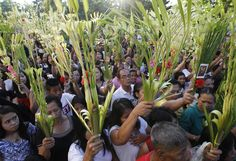 Pope Francis led a service from the Vatican as Christians around the world celebrate Palm Sunday, marking the start of Holy Week. Holidays In America, Family Tv, Prince Of Peace, Palm Sunday, Holy Week, Pope Francis, Filipino, Christianity, Catholic
