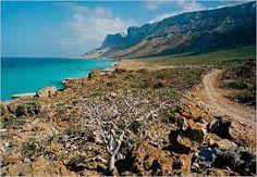 Arabian sea cost, YEMEN :)