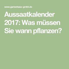 Aussaatkalender 2017: Was müssen Sie wann pflanzen?