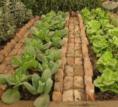Veggie Garden | Brick Edge + Path