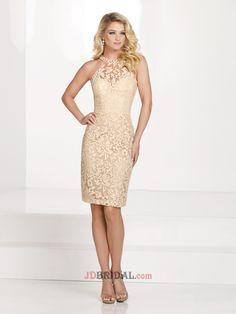 Fresh Sheath Scoop Sleeveless Knee Length Lace Empire Mother Bride Dress