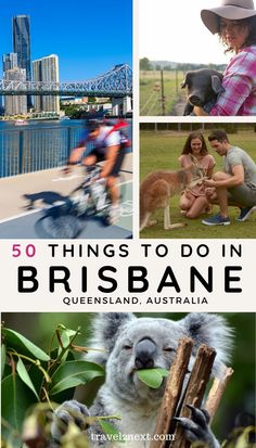 50 incredible things to do in and around Brisbane. There are several farms around Brisbane you can visit on a day trip, but the most picturesque farming country near the capital is the Scenic Rim. #thingstodo #brisbane #travel #travelideas #brisbanetips #queensland #city