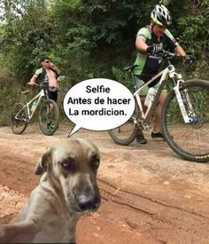 Cycling Memes Home Facebook