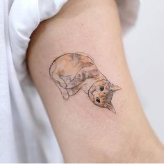 Estos tatuajes de gatos, todos ellos realizados por reconocidos artistas, muestran una forma muy adorable y tierna de mostrar amor eterno por estas mascotas
