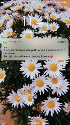 Love Captions, Italian Quotes, Foto Instagram, Depression Quotes, Whatsapp Message, Wallpaper Iphone Cute, Bad Timing, Mood Quotes, Cute Love