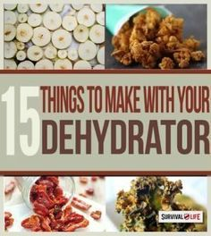 Whether you're looking for a healthy snack, food for a camping trip, or non-perishable items to add to your emergency supply, dehydrated food is the answer. #de