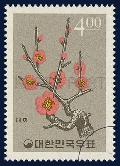 Postage Stamp Of Plant, Japanese apricot flower, Flower, orange, brown, 1965 01 15, 식물시리즈, 1965년 01월 15일, 446, 매화, postage 우표