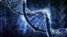 Así es la proteína que repara el ADN y evita que enfermemos de cáncer
