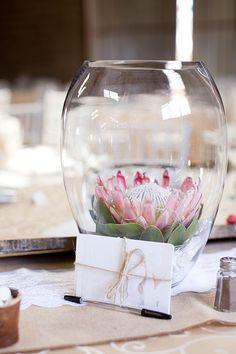 protea flower centerpiece #weddingreception #centerpiece #weddingchicks http://www.weddingchicks.com/2014/02/27/south-africa-farm-wedding/