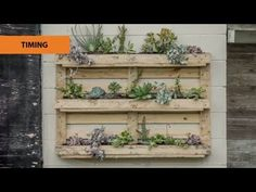 If your short on space in your garden then why not up-cycle an old pallet and create a vertical garden. Pallets are easy to get a hold of and you can get lot. Aquaponics Greenhouse, Hydroponic Gardening, Urban Gardening, Urban Farming, Indoor Gardening, Hydroponics, Pallet Garden Furniture, Pallets Garden, Small Gardens