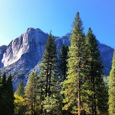 #yosemite #national #park #viajes #california #usa #fotodeldia #picoftheday #igrecommend #igersrecommend | Flickr: Intercambio de fotos