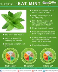 10 Reasons To Eat Mint - Favorite Pins