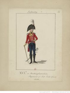16th or Buckinghamshire Regiment,  Field Officer 1801 Military costumes, 1796-1804.] / William Loftie | Gallica