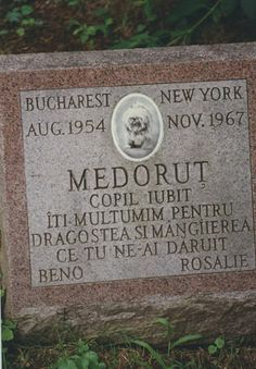 """Memorial at Hartsdale Pet Cemetery for Medorut. Born in Bucharest (1954); Died in New York (1967). Translation: """"Loved Child. We Thank You For The Love and Comfort That You Brought."""""""