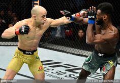 Marlon Moraes nokautuje Aljamaina Sterlinga i wygrywa drugą walkę w UFC | FIGHT24.PL - MMA i K-1, UFC