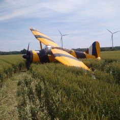 One of only 3 flying Westland Lysander's had to make an emergency landing in a field earlier today