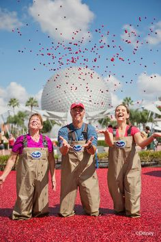 Visit the Ocean Spray Cranberry bog at the 18th annual Epcot Food & Wine Festival