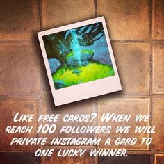Free Cards, 100 Followers, Card Games, Competition, Instagram, Playing Card Games