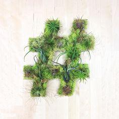 Art We Heart : Entre tableau vegetal et green graffiti