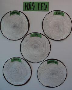 Náš les - připraveno na zaznamenávání skupinových bodů Too Cool For School, Decorative Plates, Projects To Try, Trees, Cool Stuff, Flowers, Tree Structure, Royal Icing Flowers, Wood