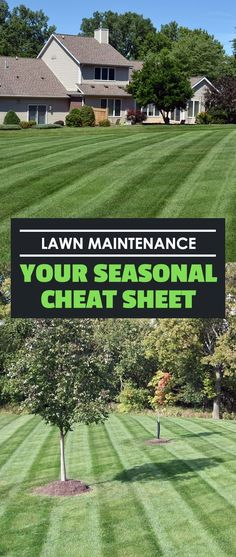 Lawn maintenance doesn't just happen in spring and summer — it's a year-round process. Here's a cheat-sheet for what to do in every season of the year.