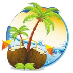 hawaiian coconut - Google'da Ara