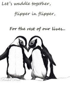 Penguin Love!!