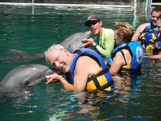 Dolphin Discovery Riviera Maya, the experience of a lifetime swimming with dolphins!