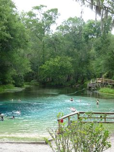 Blue Springs, Alachua, Florida, north of Gainesville, FL.  North Central Florida has the largest concentration of fresh water clear springs in the world.  www.GainesvilleFloridaHomes.com