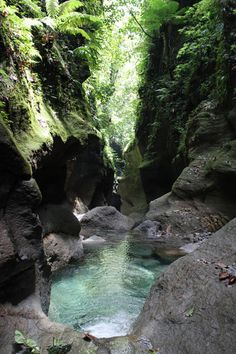 Exploring the scenic Titou Gorge in Dominica (by Extreme Dominica).