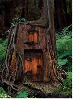 What magical creature might dwell in a home carved into the hollow stump of this tree?
