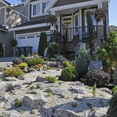 View of a Nice Alpine Garden In Front of a Suburban Home