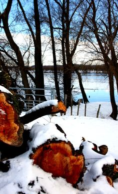 Snow and wood van Yvonne Jagers Van, Wood, Photography, Outdoor, Outdoors, Photograph, Woodwind Instrument, Timber Wood, Fotografie
