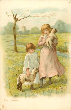 PET LAMBS - Art by HELEN JACKSON