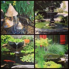 A collage of cool fountains we have done at Carters Nursery. Pond, Collage, Nursery, Patio, Outdoor Decor, Home Decor, Water Pond, Collages, Decoration Home