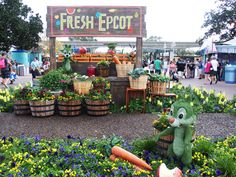 Chip and Dale! - EPCOT's Flower and Garden Festival 2017