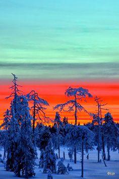 #travel  #finland  #lapland  #winter  #kaamos  #matkailu  #suomi