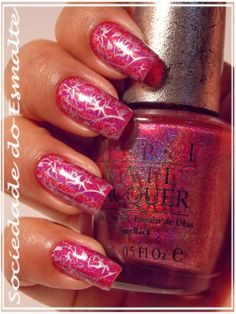 Apipila P.17 e DS Exclusive - Opi