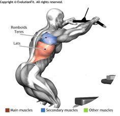 LATS -  STRAIGHT ARM PULLDOWN