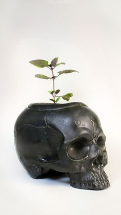 Two Part Ceramic Skull Self Watering planter Available at…