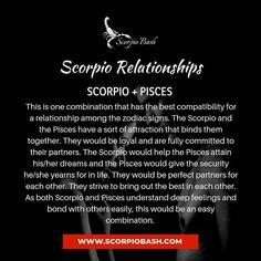 Pisces Woman Scorpio Man, Scorpio And Pisces Relationship, Scorpio Relationships, Scorpio Love, Scorpio Sign, Scorpio Quotes, Scorpio Facts, Pisces Zodiac, Zodiac Signs